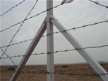 刺丝围栏网